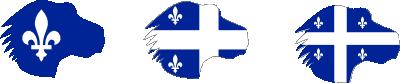 Essai logo icône Mozilla Québec